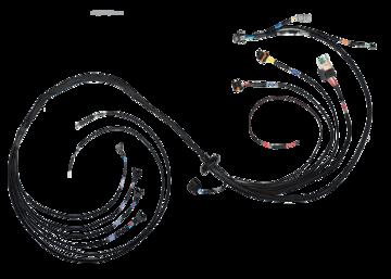 FT550 Fueltech Harness